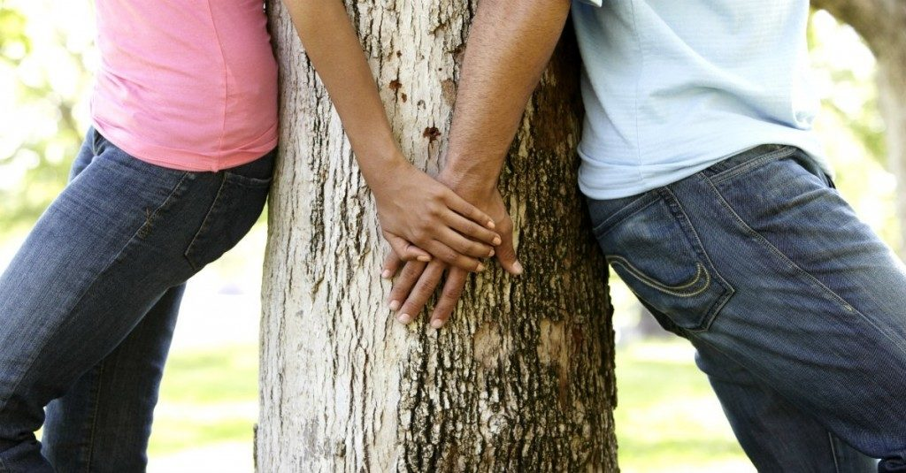 13194-park-love-romance-hold-hands-tree-hide-couple.1200w.tn_-1024x535