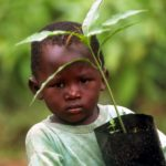 Organic Farming Knowledge Grows Across Africa